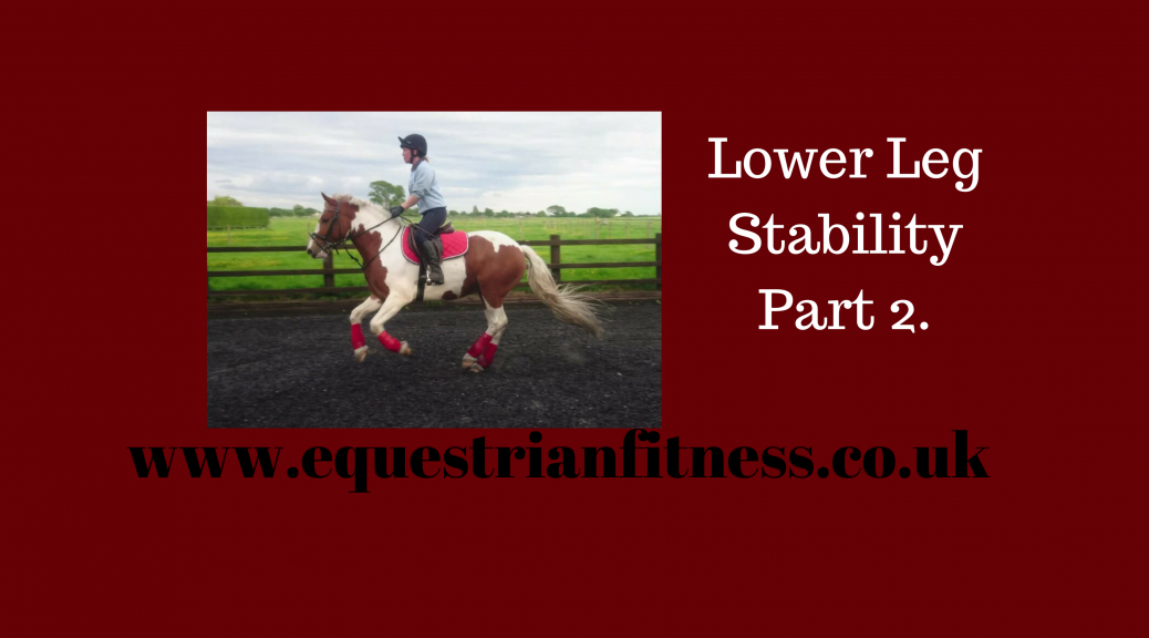 Lower Leg Stability Part 2.