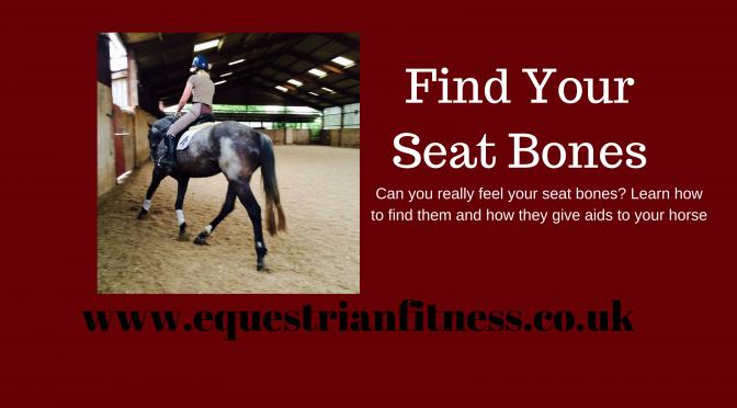 Find Your Seat Bones