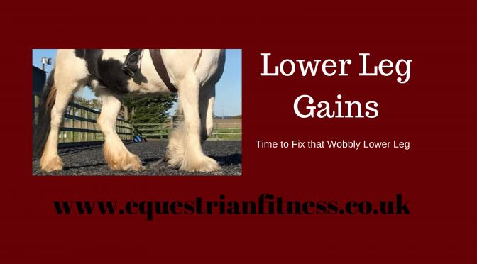 Lower Leg Gains