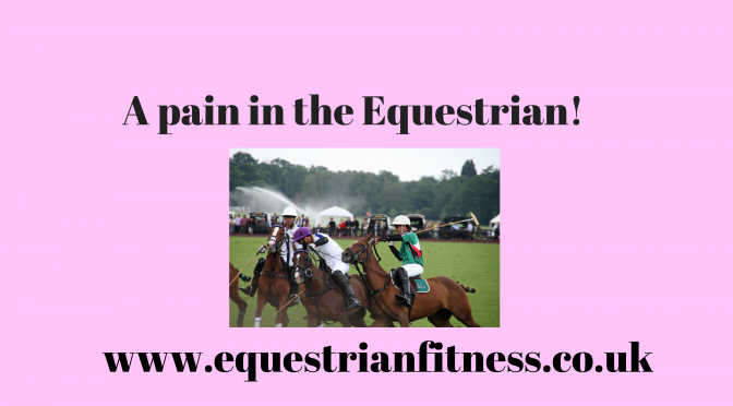 A pain in the Equestrian
