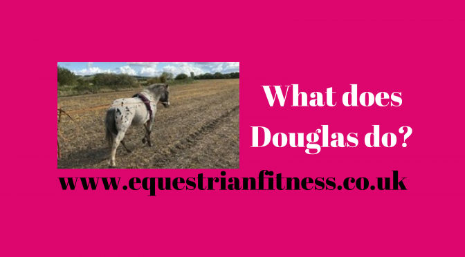 What does Douglas do?