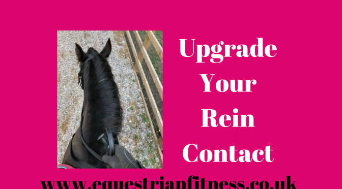 Improve Your Rein Contact
