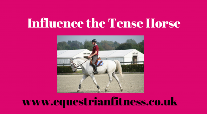 Influence the Tense Horse