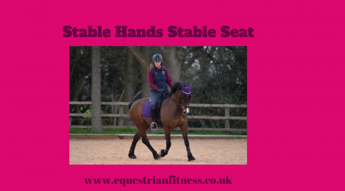 Stable Hands Stable Seat