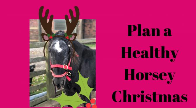 Plan a Healthy Horsey Christmas