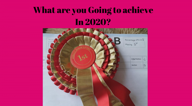 What are you going to achieve in 2020?