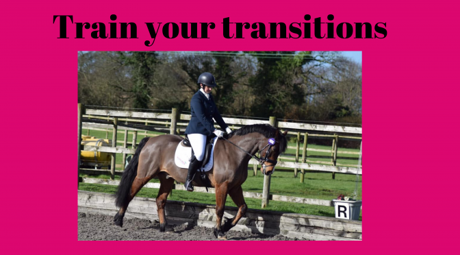 Train your Transitions