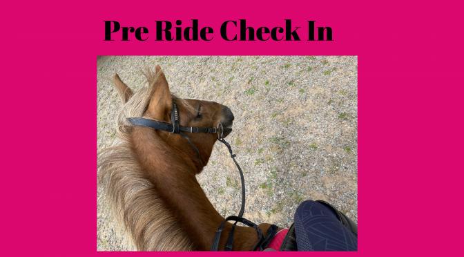 Pre Ride Check In