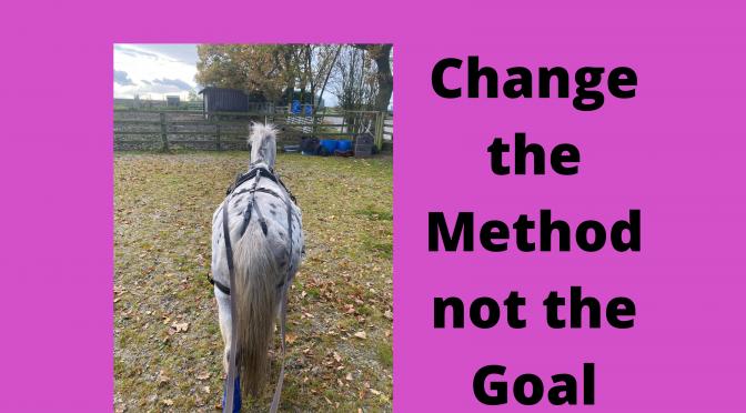 Change the Method Not Goal