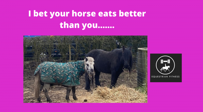 I bet your horse eats better than you ……..