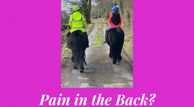Pain in the Back?